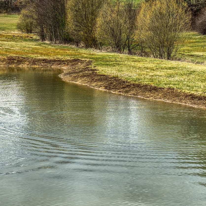 Wasser am Feld