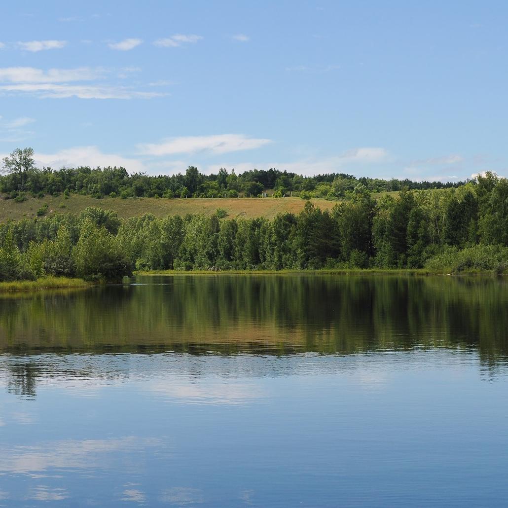 Wasser im Teich