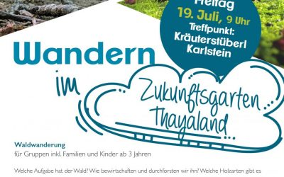 Waldwanderung in Karlstein